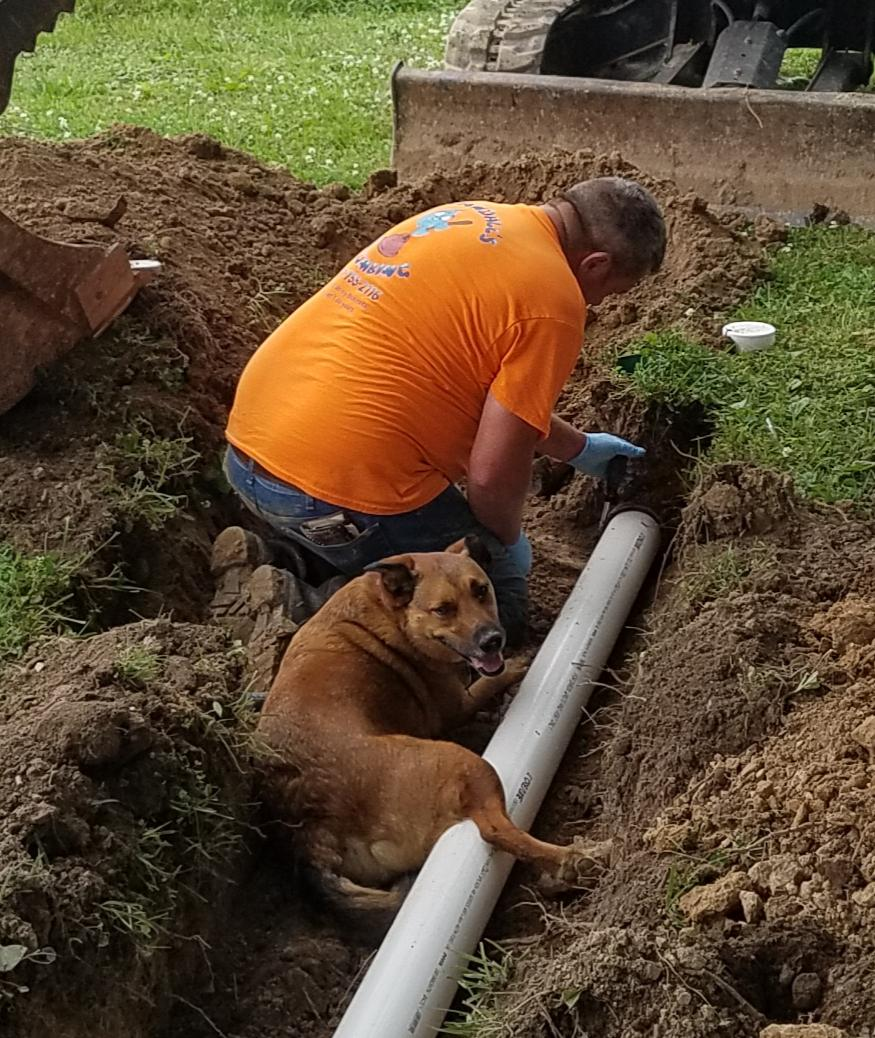 Plumbing... it\'s a dogs life, lol! In the heat of summer, one of the coolest places to be is in a newly dug hole.